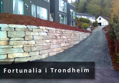 Fortunalia-i-Trondheim-2