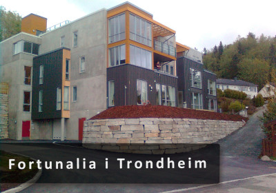 Fortunalia-i-Trondheim
